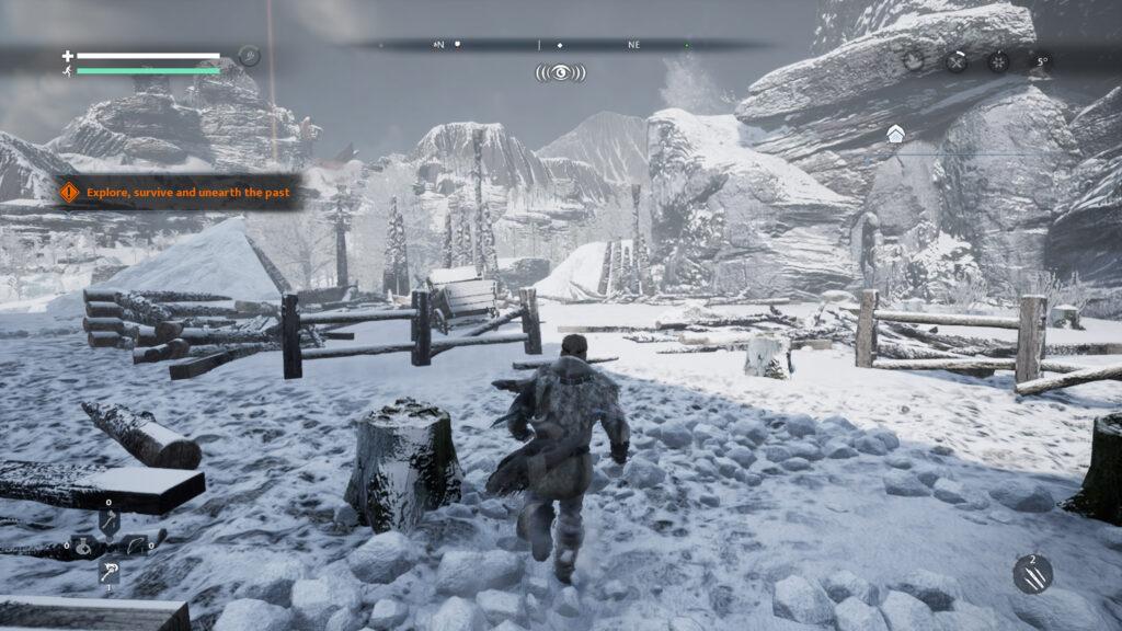 sfeer in winterlandschap met Ash